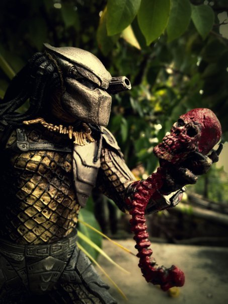 predator_with_skull_by_tomzj1-d387d6e
